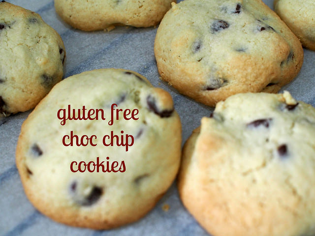 thermomix gluten free choc chip cookies