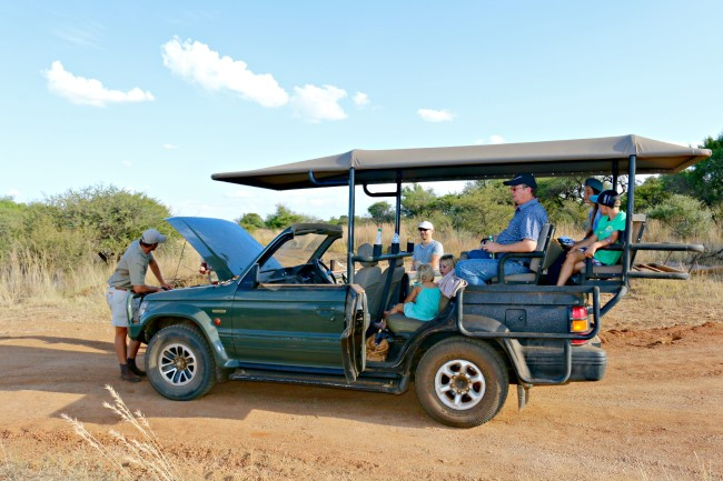 kids on safari in south africa